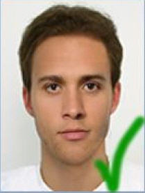 brazil visa picture sample