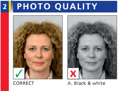 dutch passport photo sample
